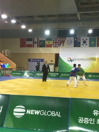 results 1st World Youth Martial Arts Masterships Jincheon2017